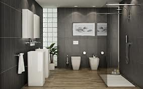 http://www.csgnet.it/wp-content/uploads/2011/10/Bagno-Moderno-scuro.jpg